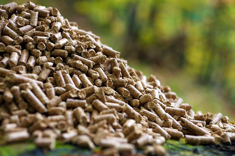 Empresa francesa faz plástico biodegradável utilizando leite - Pensamento Verde
