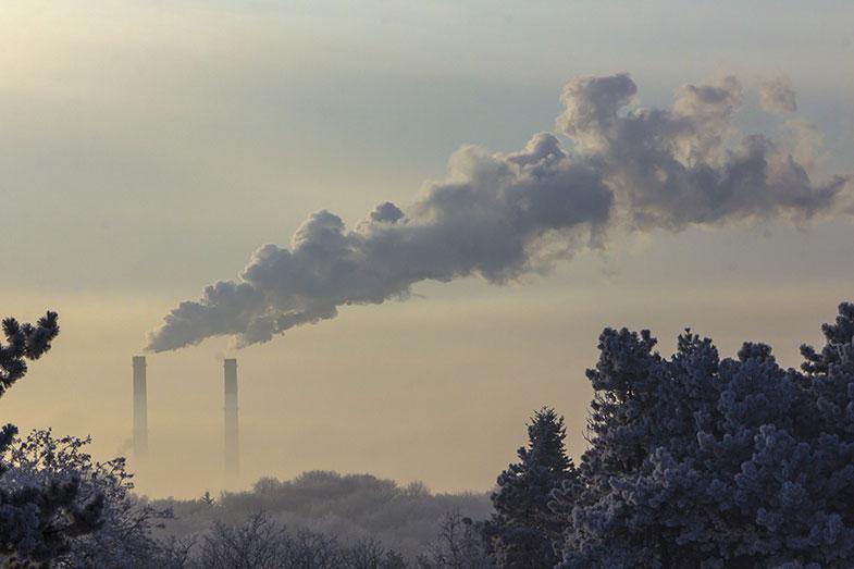 Grandes empresas unem-se e lançam iniciativa para se tornar carbono zero - Pensamento Verde