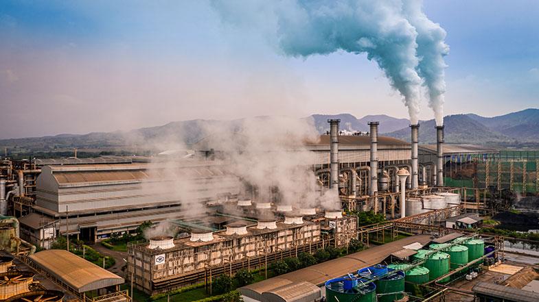 Mudanças climáticas: o que podemos fazer para ser parte da solução e não do problema? - Pensamento Verde