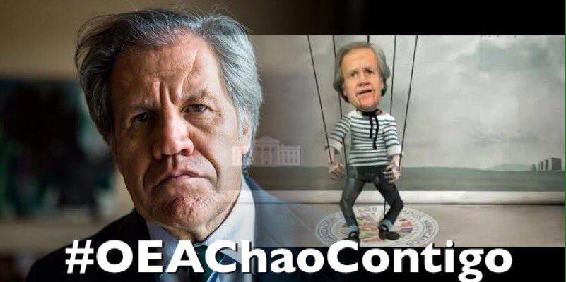 Resultado de imagen para Chao OEA