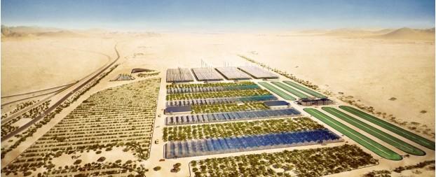 Cultivando en el desierto: el proyecto Bosque del Sáhara