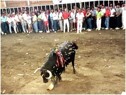 Toro San Juan, Fuente: Público.es
