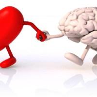 Siga seu coração, mas leve seu cérebro junto