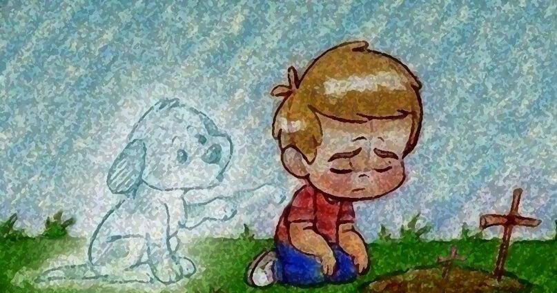 Por que perder um animal de estimação dói tanto