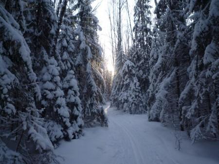 les changements dans ma vie_paysage hivernale