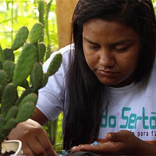 Sabrina Bizunga, criadora do Flor do Sertão, aparece manuseando plantas