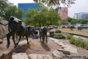 Texas0048