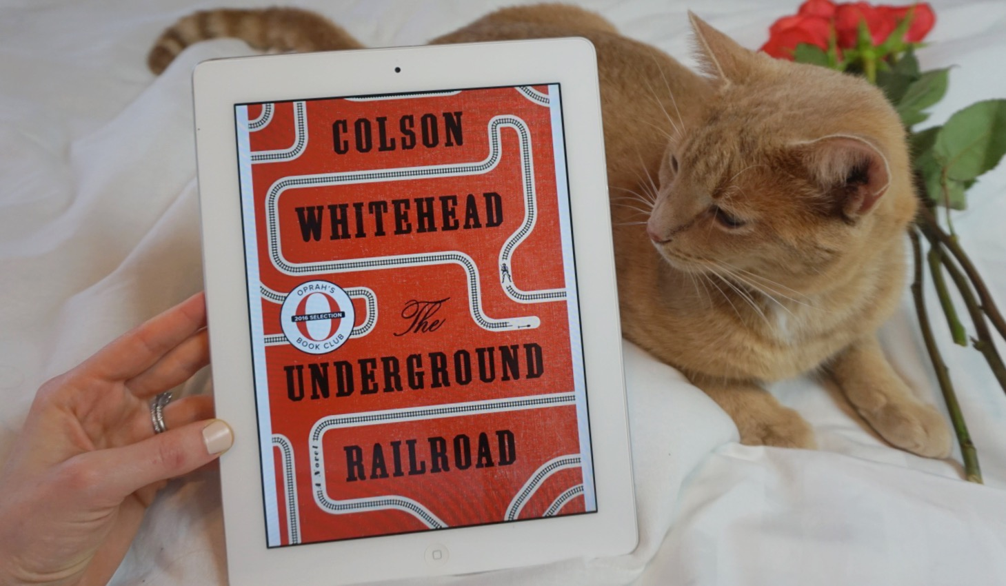 Thoughts on The Underground Railroad by Colson Whitehead | Dara Boxer @ Peonies and Bees