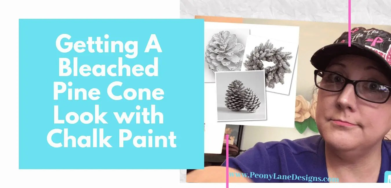 Getting a Bleached Pine Cone Look with Chalk Paint