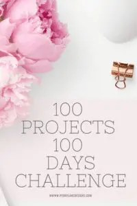 100 Projects 100 Days Challenge // New Years Challenge // life challenges // challenges to do // better yourself challenge // fun challenges // makerspace challenges // monthly challenge ideas