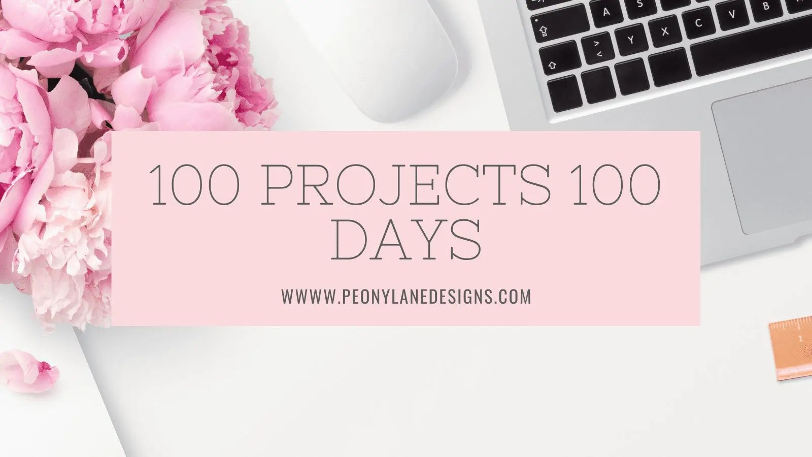 100 Projects 100 Days Has Begun