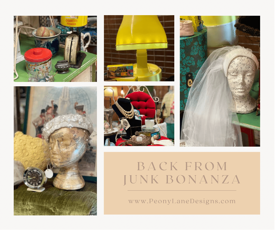 The Return from Junk Bonanza: Amazing People, Exceptional Treasures