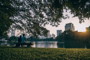 tall buildings by the lake