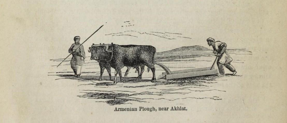 Armenian plough near Akhlat