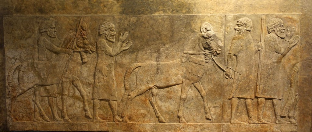 In a letter of 715 BC, Sargon II describes how King Mita of Mushki had sent emissaries to the Assyrian governor in Quwê, Ašur-Šarru-Usur, asking for an exchange of ambassadors.
