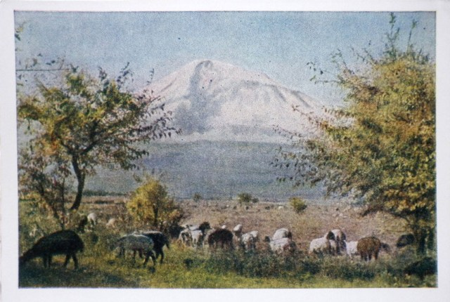 Ararat valley - 1957 - Armenia USSR