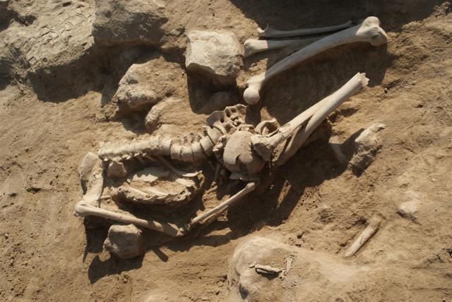 Metsamor ancient Armenia