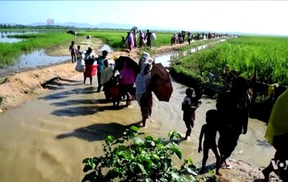 Indian repression against Rohingya refugees is a shameful act