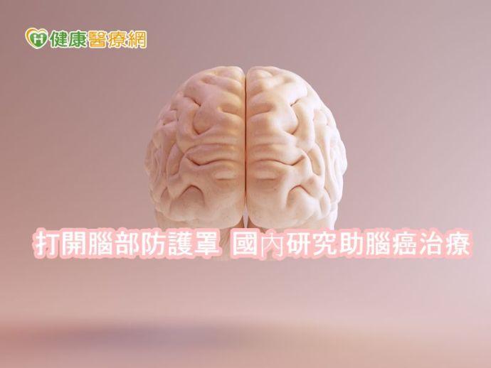 打開腦部防護罩 國內研究助腦癌治療