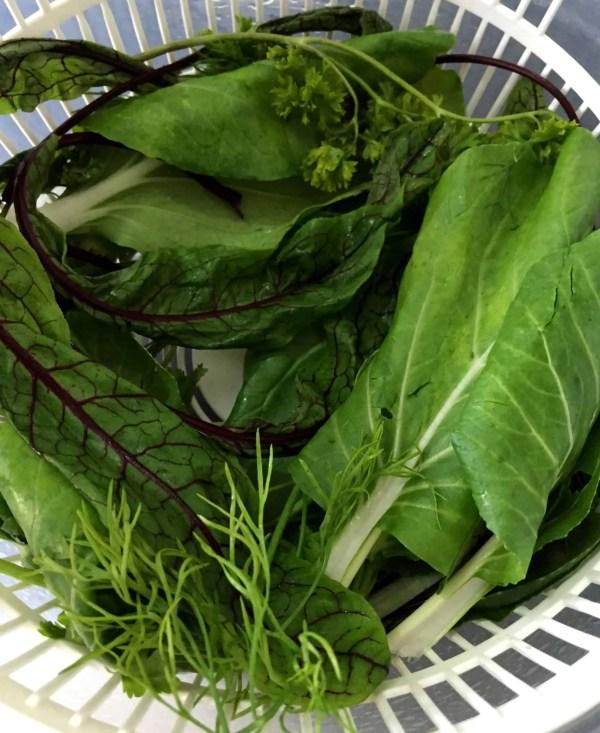 Salad Greens and Herbs