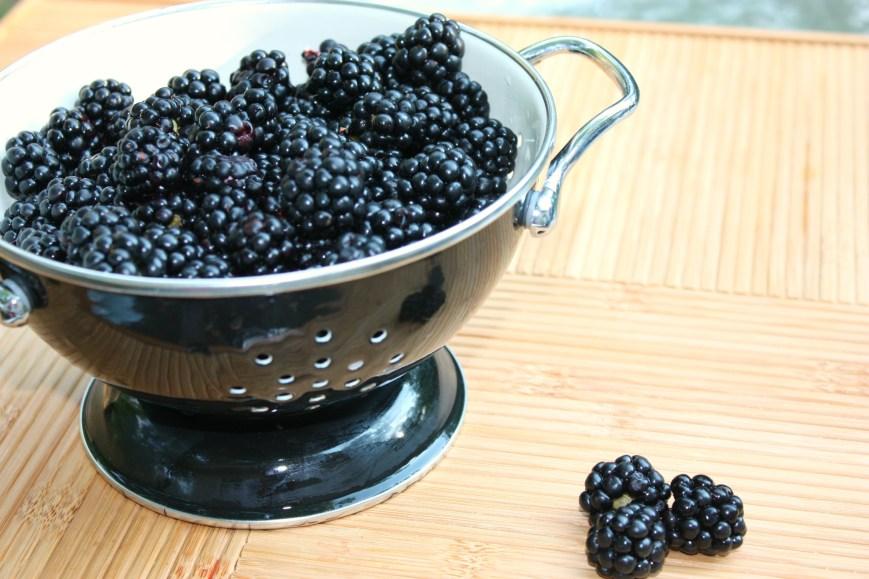 Blackberryoatmeal 004FF