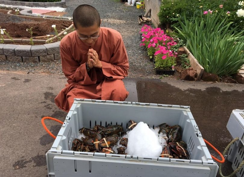 monks-free-lobsters-810x586