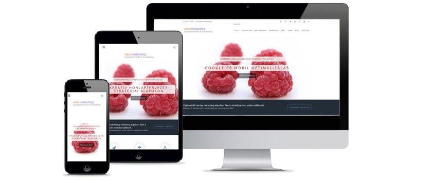 Mennyibe kerül egy honlap?