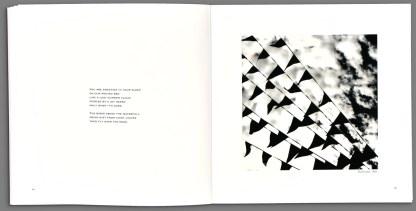 Recent Forgeries by Viggo Mortensen