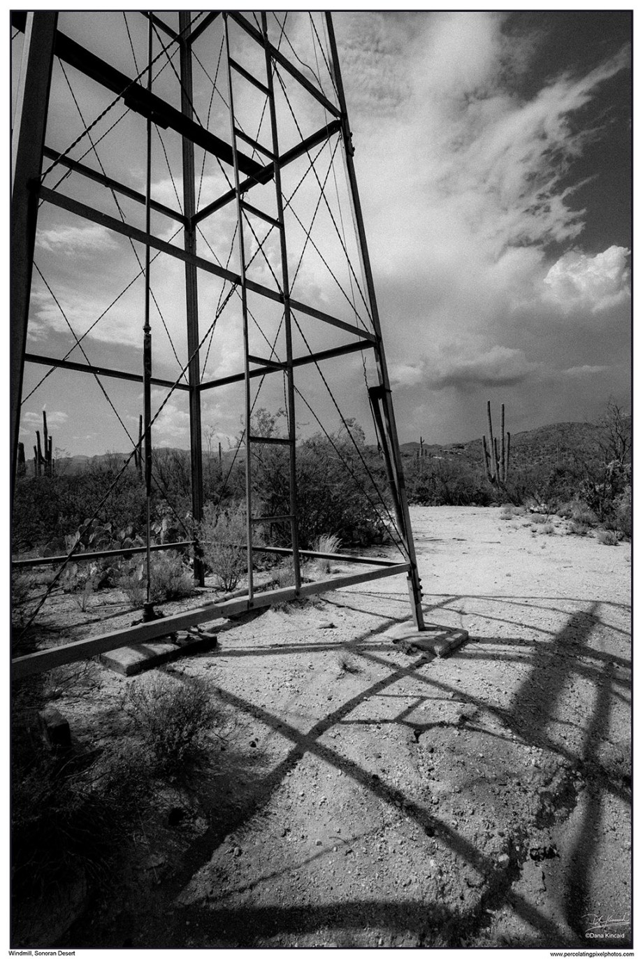 Windmill in the Sonoran Desert