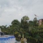 Condo For Sale in Pereira   Expat Lifestyle
