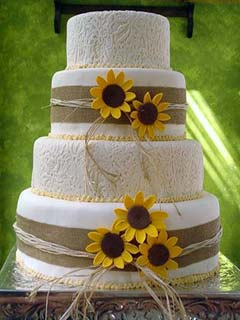 Single Tiered Wedding Cake With Flower Topper