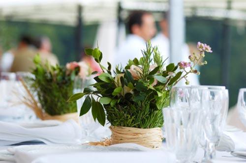 centerpiece plants table