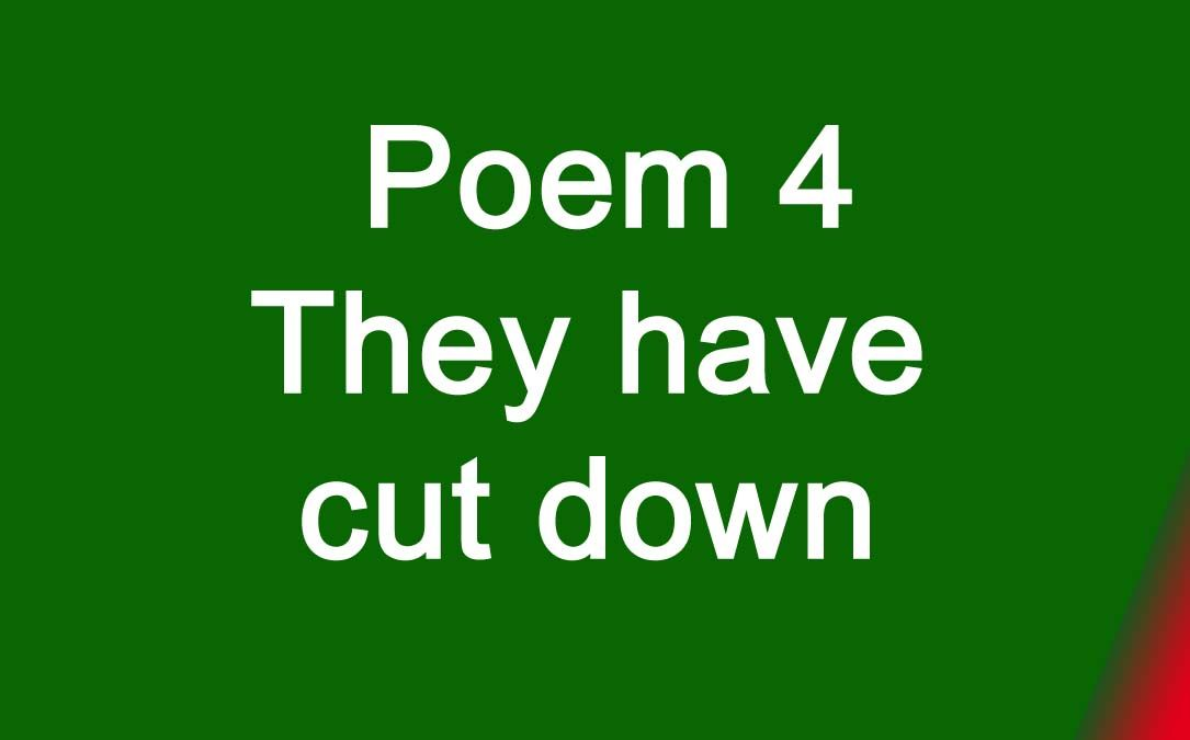Poem 4 They have cut down