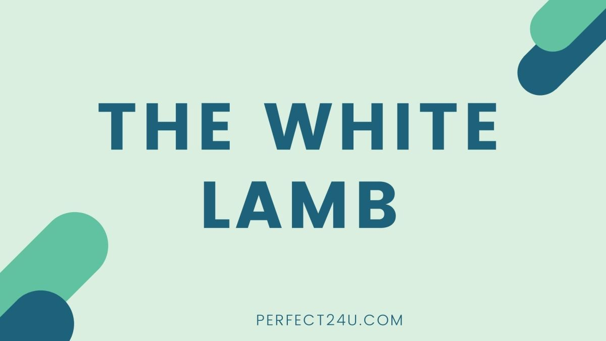 The White Lamb Class 11th Notes Chapter 9 for kpk