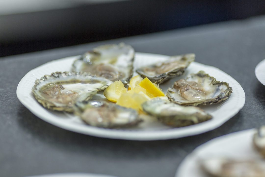 Falmouth Oyster Festival 2018