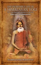 Baba Lokenath