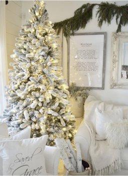 Christmas Tree Roundup, Best Christmas Trees, Christmas Trees, Christmas Tree