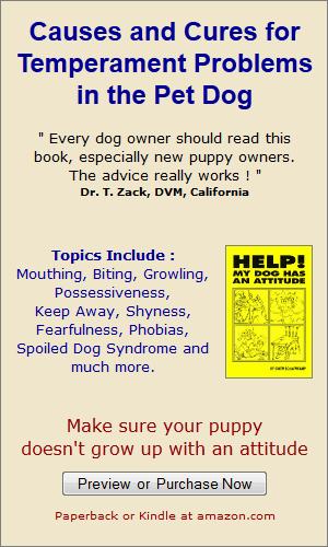 Teach Dog Not To Bark When Alone