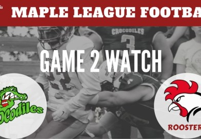 Game to Watch! Seinäjoki Crocodiles or Helsinki Roosters, Who Will Win?
