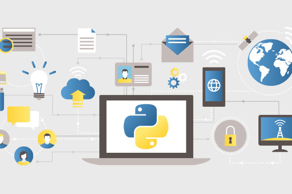 paid learning resources python