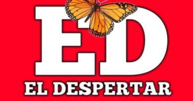 Capturan a célula criminal en Zamora: Aseguran armas, droga y vehículos