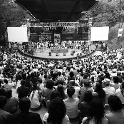 MinCultura cancela su apoyo al Festival Internacional de Poesía de Medellín
