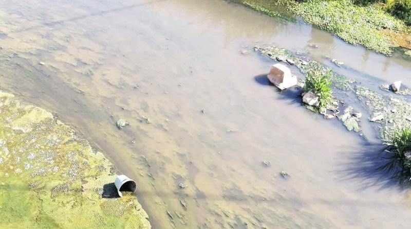 Sin entender el daño que representa el arrojar aparatos electrónicos y basura de todo tipo al cauce del río. Se siguen observando televisiones, cubetas y demás basura, pese a las campañas de reciclaje de electrónicos que hacen las autoridades estatales y municipales.