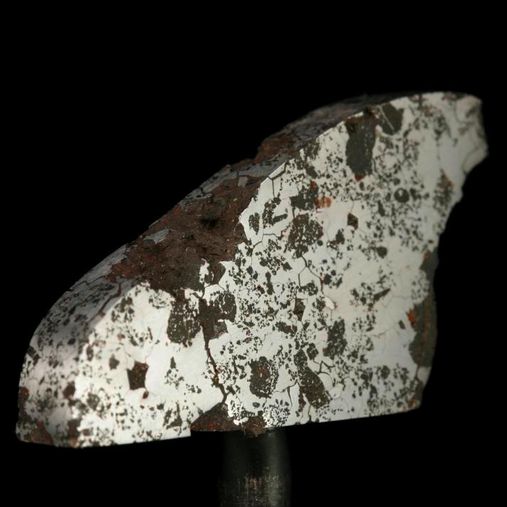 Iron Silicated iron meteorite slice