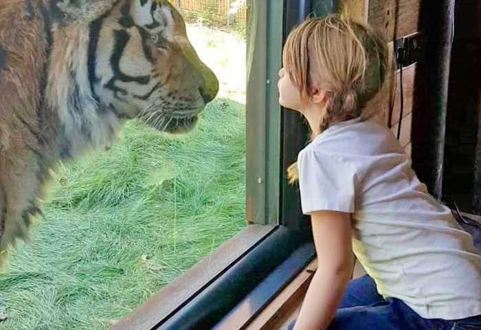 Ένα ξενοδοχείο ζωολογικό πάρκο