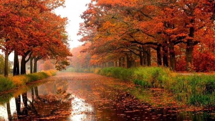 Φθινόπωρο—Μια Μαγευτική Εποχή του Χρόνου