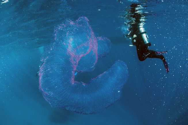 Μυστήριο «πλάσμα» ανακαλύφθηκε στην ακτή της Αυστραλίας!