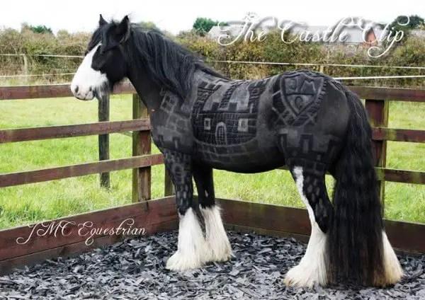 JMC-Equestrian-clipping4-600x424