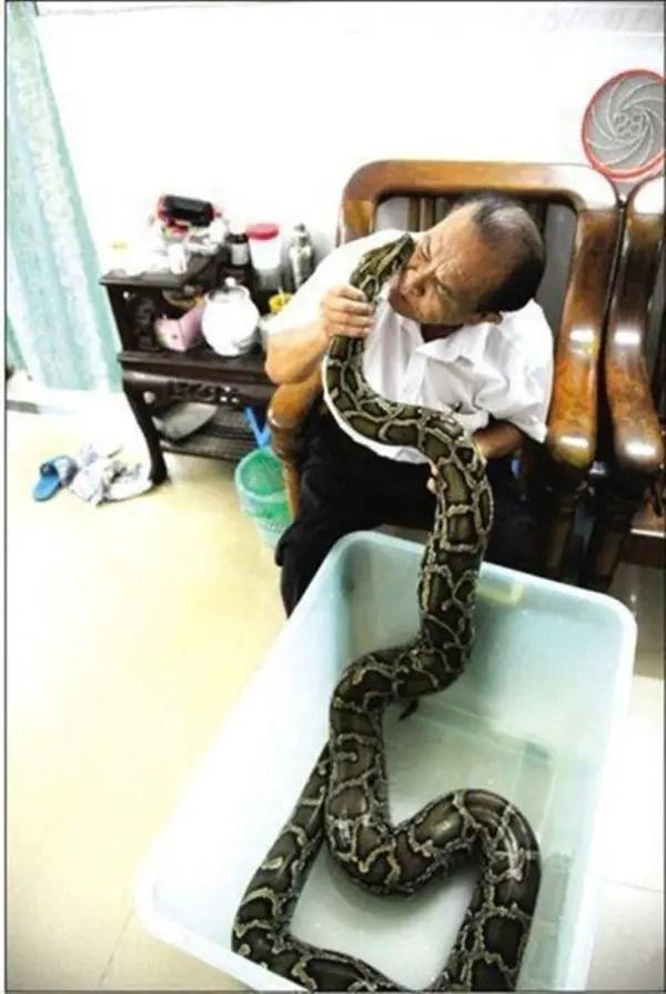 shi-jiming-python-600x895