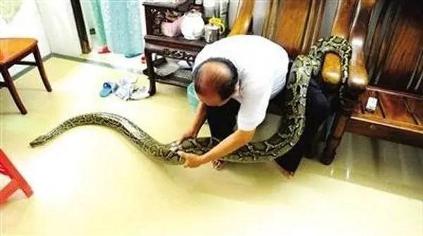shi-jiming-python2